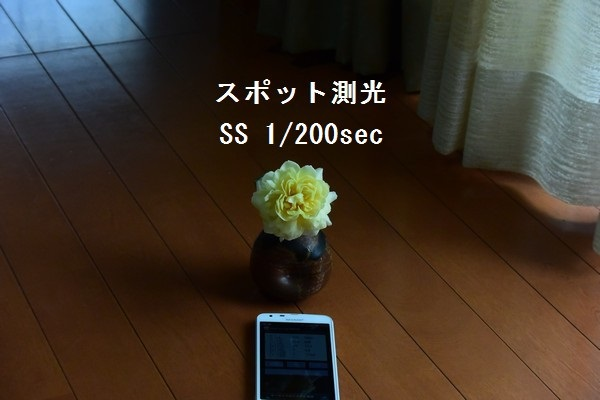 __DSC_6228.jpg