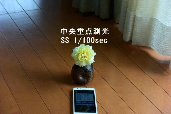 __DSC_6229.jpg