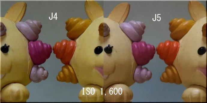 _1600.jpg