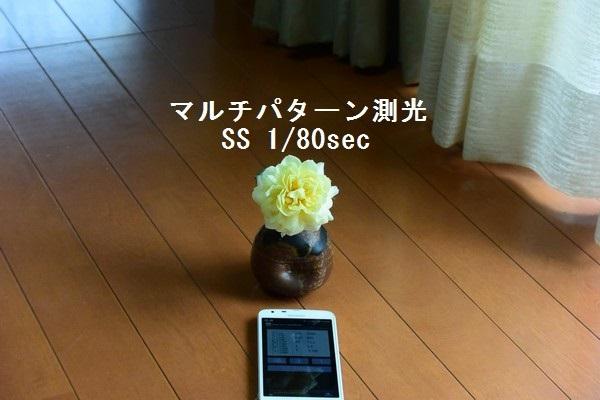 __DSC_6230.jpg